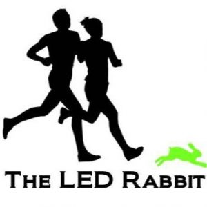 the led rabbit